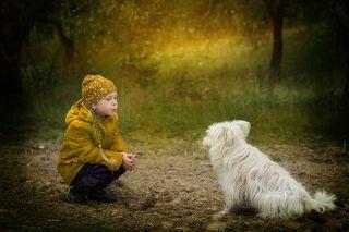 Amicizia, Cane, Tuttavia, Amici, Gentilezza, Animali
